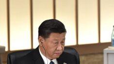 미 정부, 시진핑 호칭 '총서기'로 변경…자국민 오해 방지
