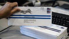 미국서 트럼프 찍은 우편투표 용지 버려진 채 발견…FBI 수사 착수