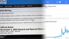 """대선 TV토론 직후 미국서 """"내가 한 투표 바꿀 수 있나"""" 구글 검색량 급증"""