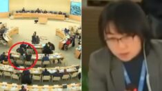 UN 회의에서 불리한 증언 나오자 중국이 보인 반응 (영상)