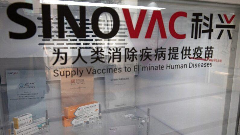 시노백이 개발 중인 코로나19 백신 '코로나백' | EPA=연합뉴스