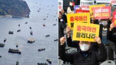 """""""중국어선이 동해 오징어 말살했다"""" 참다못한 어민들이 호소하고 나섰다"""