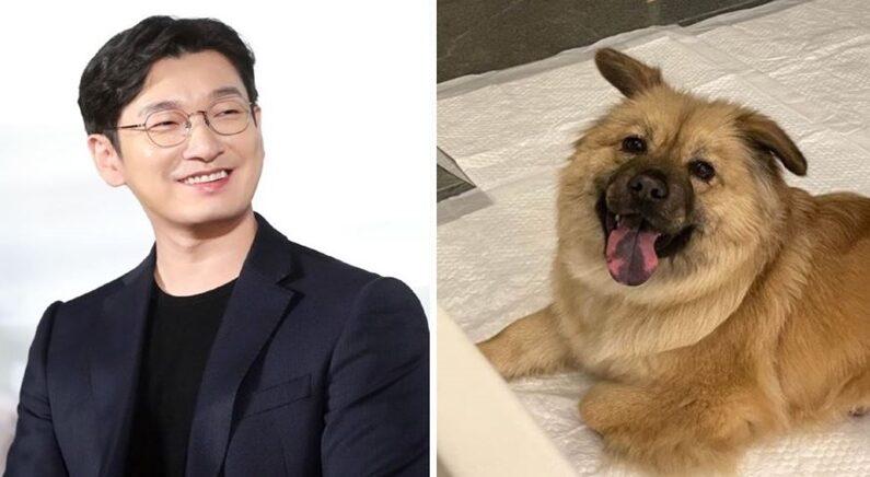뉴스1(좌), 고성군 유기동물보호소 인스타그램(우)