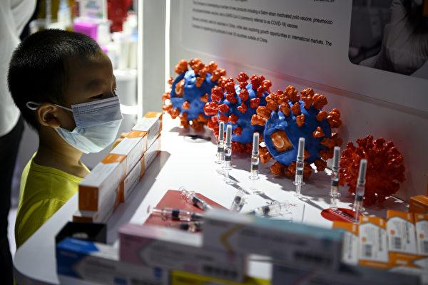 베이징 국제무역박람회에서 한 어린이 관람객이 중공 바이러스 백식 후보물질 전시대를 관람하고 있다. 2020.9.6 | NOEL CELIS/AFP via Getty Images