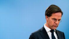 네덜란드 내각 총사퇴…아동 보육정책 착오로 다수 가정 이혼·파탄