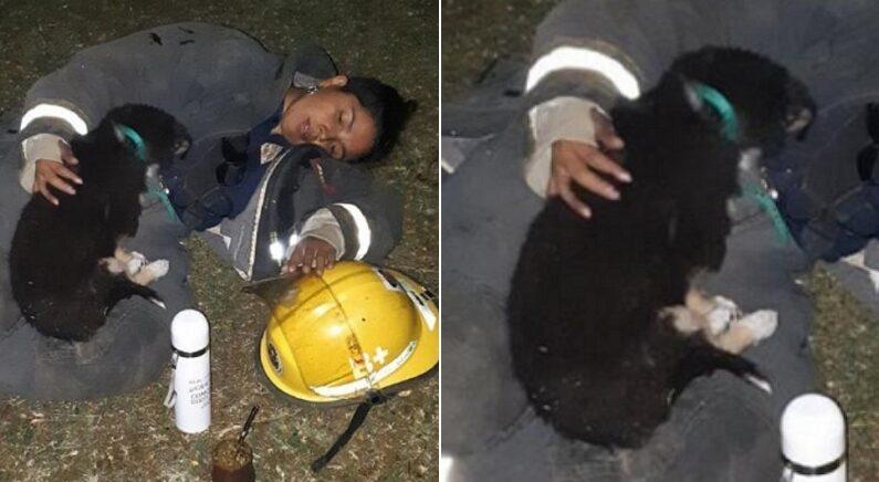 Facebook 'Asociacion bomberos voluntarios El Bolson'