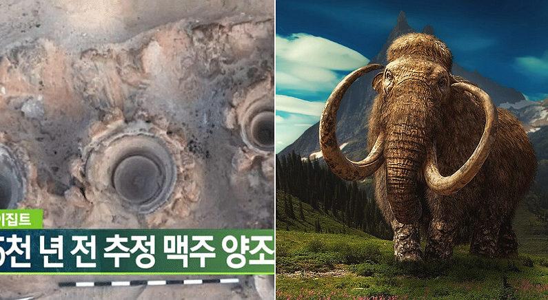 [좌] KBS 보도 화면 캡처, [우] 픽사베이