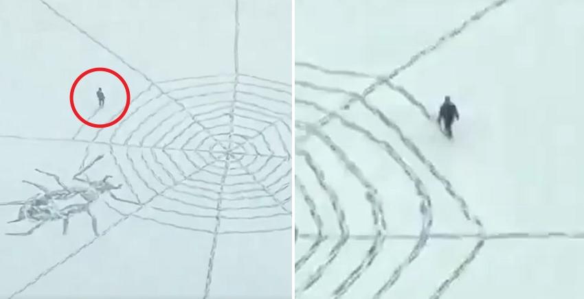 심심해서 하루종일 '대형 거미줄'만 만들었는데 갑자기 유명해진 남성 (영상)