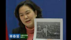 신장 강제노역 비난에 '흑인노예' 사진으로 응수한 화춘잉…알고보니 가짜 사진