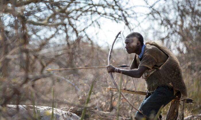 채집수렵 생활 그대로 사는 탄자니아 '하드자' 부족의 먹는 법, 사는 법