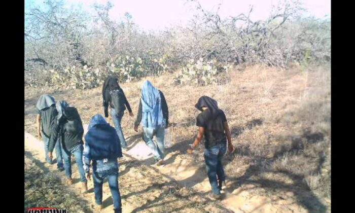 2021년 3월 미국 텍사스주 짐 호그 카운티의 한 사설 목장을 거닐고 있는 불법이민자들   수잔 키베 제공