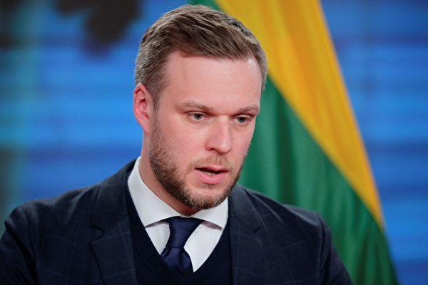 가브리엘리우스 란스베르기스 리투아니아 외교장관이 지난 3월 17일 독일 외무장관을 만난 뒤 기자회견에 응하고 있다.   HANNIBAL HANSCHKE/POOL/AFP via Getty Images 연합