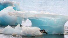 [칼럼] 어느새 사라진 '지구 온난화'…새로 등장한 '기후변화'
