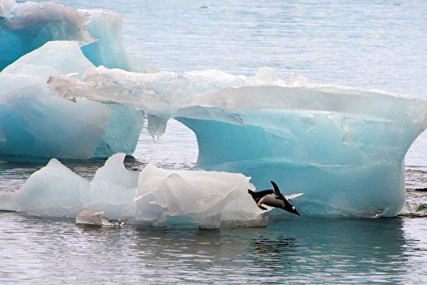 지구 온난화의 사례로 보도되는 남극 빙하 감소. 그러나 지구 온난화가 인간의 활동에 따른 것인지는 확실하지 않으며, 지구의 온도는 역사적으로 주기적 변화를 거쳐왔다는 반론이 만만치 않다.   VANDERLEI ALMEIDA/AFP/연합