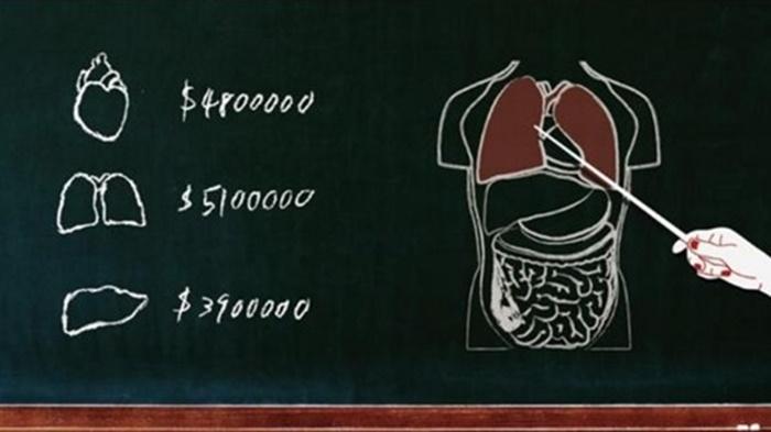 장기 부위에 따른 판매가격 예시도.   대만 국제 장기이식협회 제공