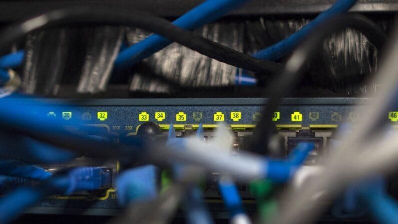 자료사진. 네트워크 장비에 연결된 복잡한 케이블 | AFP/연합