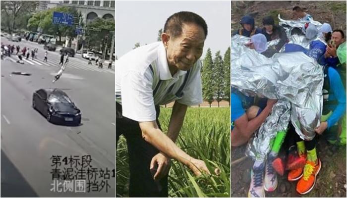 지난 며칠 동안 중국 언론의 지면과 인터넷 공간은 위안룽핑(元隆平) 사망·간쑤(甘肅) 산악마라톤대회·다롄(大連) 횡단보도 사건으로 채워졌다. | 에포크타임스