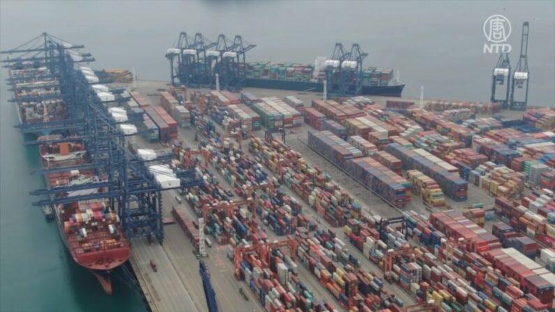 중국 선전시 옌톈항 컨테이너 선적 하역 시설 | NTD