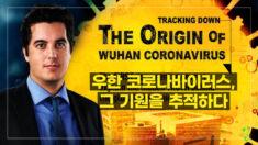 [탐사보도 다큐] 우한 코로나바이러스, 그 기원을 추적하다