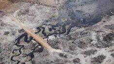 '녹색에너지' 무색한 아마존 벨루 몬치 수력발전소의 역설