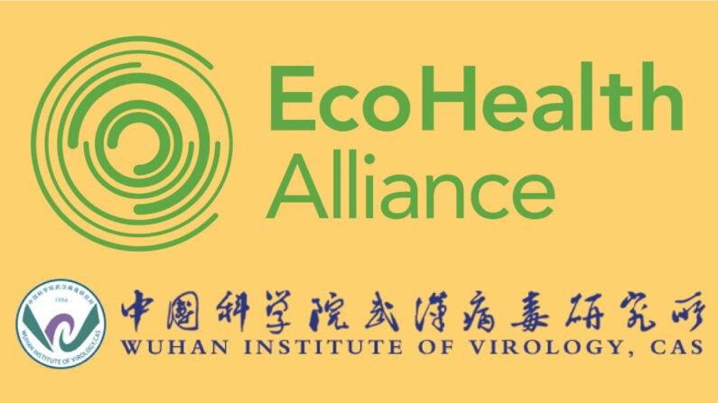 미 전염병 예방 비영리단체 '에코헬스 얼라이언스' 로고(위)와 중국 우한 바이러스 연구소 로고(아래). 에코헬스는 우한 연구소의 박쥐 코로나 인체 감염성 강화 연구를 지원했다는 추궁을 받고 있다. | 화면 캡처