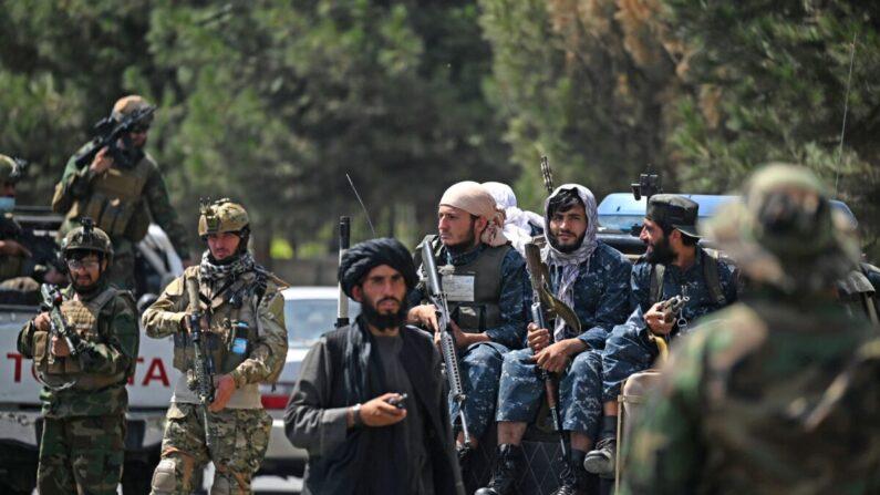 아프가니스탄을 점령한 탈레반 테러리스트들. 2021.8.29 | AAMIR QURESHI/AFP via Getty Images