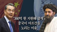 """중국이 아프간을 노리는 이유…전문가 """"'팍스 시니카' 를 위한 포석"""""""