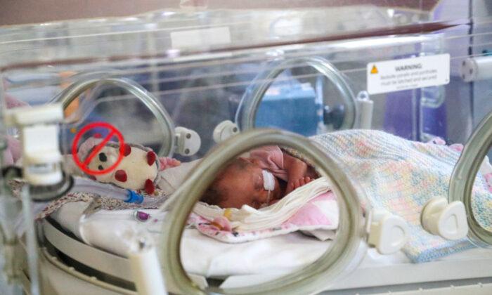 미국 산부인과 병동 신생아실.   Steve Parsons/Pool/Getty Images