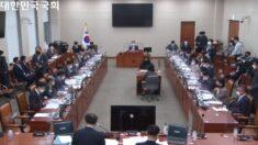 금감원 국정감사, '도이치모터스·대장동 의혹' 두고 與野 대립
