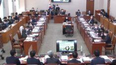 법사위, 마지막 국감에도 '대장동·고발 사주'에 시선 집중